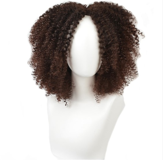 Afro Curly Synthetic Hair Wig